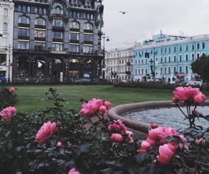 flowers, city, and architecture image