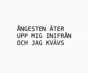 swedish, text, and angest image