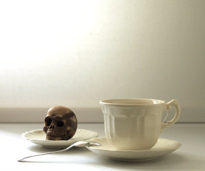 chocolate skull image