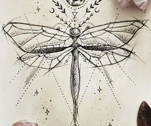 drawing and dragonfly image