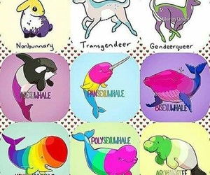 animals, gender, and Sexual orientation image