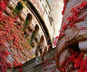 castle, architecture, and flowers image