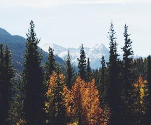 bonheur, mountain, and nature image