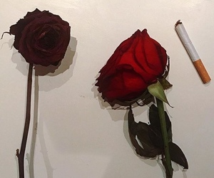 rose, cigarette, and aesthetic image