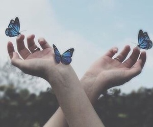 butterflies and hands image