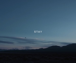stay, zedd, and don't leave me image