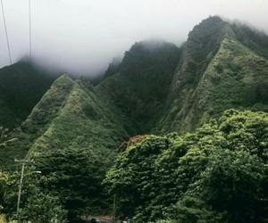 green, hawaii, and heaven image