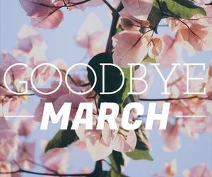 goodbye, march, and pink image