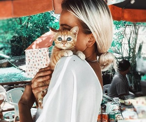 cute, blonde, and cat image