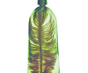 bottle, feather, and green image