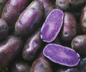 potatoes, purple, and vegetables image
