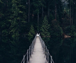 beautiful place, holiday, and nature image