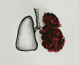 lungs, art, and drawing image