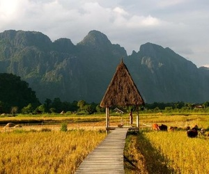 Laos and 🇱🇦 image