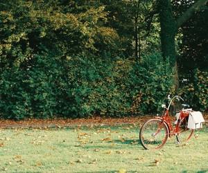 bike, vintage, and nature image