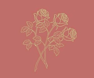 pink, rose, and flowers image