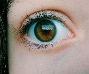 amber eyes image