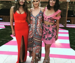 brie bella, renee young, and bella twins image