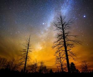 night sky, starry night, and wallpaper image