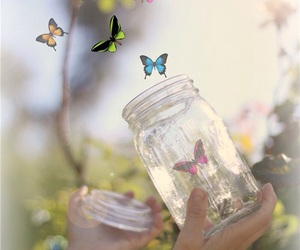 butterflies, nature, and ethereal image