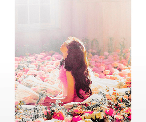 flowers, snsd, and korean image