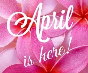 april, flowers, and pink image