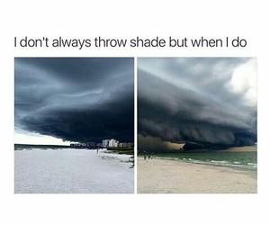 funny, meme, and tumblr image