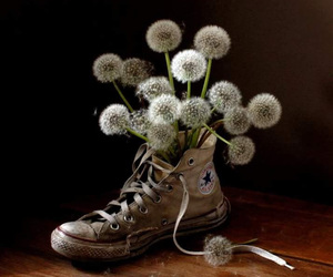 converse and dandelion image