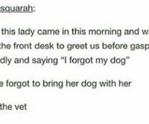 dog, wtf, and instagram image