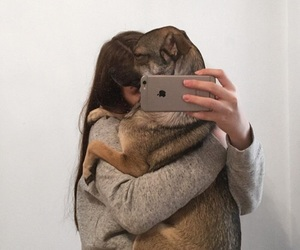 dog, fashion, and goals image