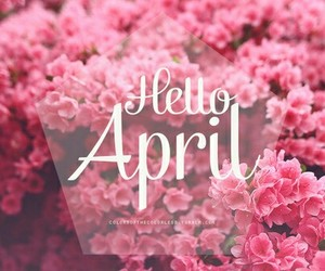 april, spring, and pink image