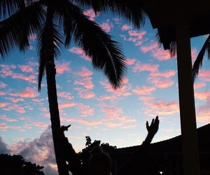 adventure, palm trees, and pink image
