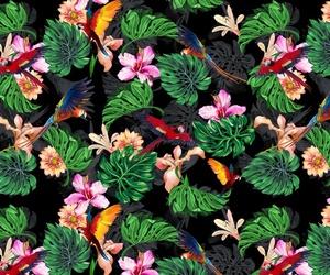 background, bird, and botanical image