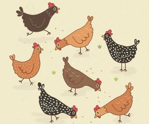 art, chickens, and draw image