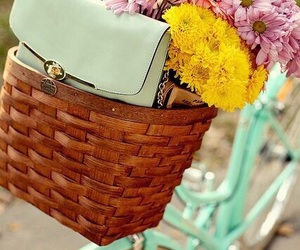 flowers, bicycle, and basket image