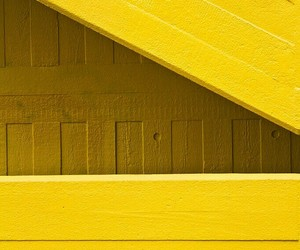 flickr, photography, and yellow image