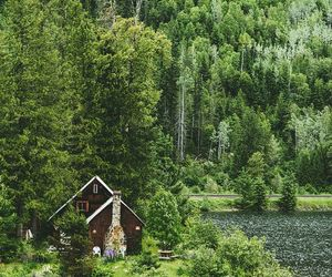 nature, house, and cabin image