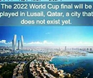 world cup, qatar, and wtf facts image