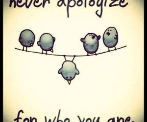 bird, quotes, and apologize image