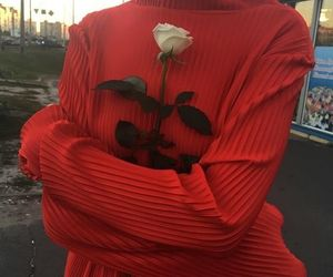 red, rose, and aesthetic image
