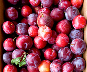 food, fruit, and plum image