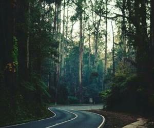 carretera, naturaleza, and perfeccion image