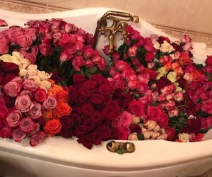 red roses, roses, and milion flowers image