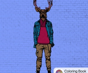 colour, fashion, and draw image