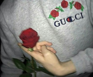 rose, gucci, and red image