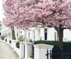 spring and travel image