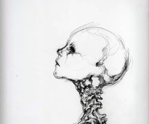 art, drawing, and skeleton image