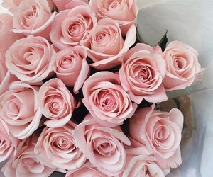bouquet, pink, and rose image