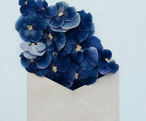 flowers, blue, and envelope image