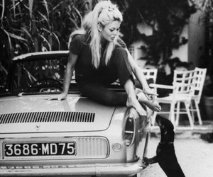 brigitte bardot, black and white, and dog image